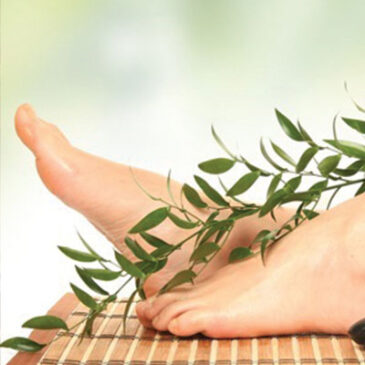 The Difference Between a Spa Massage and a Private Practice Massage
